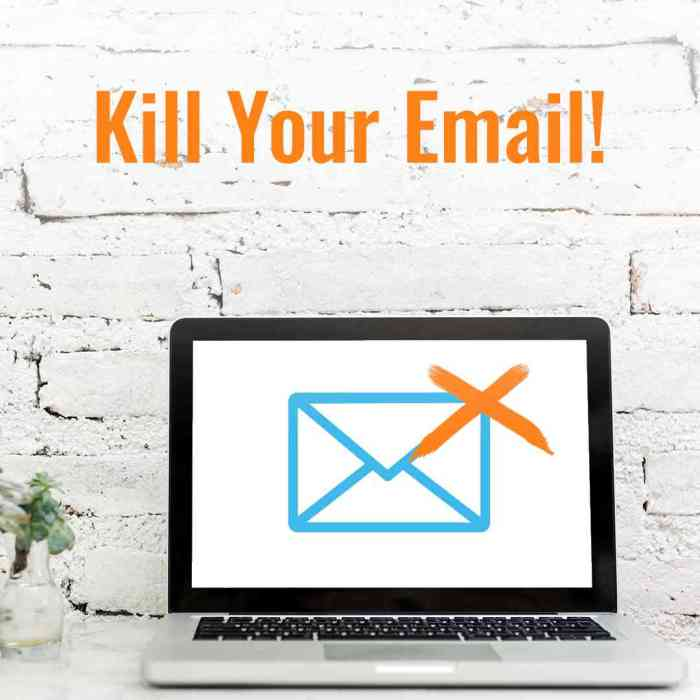 Kill your email with Webproof